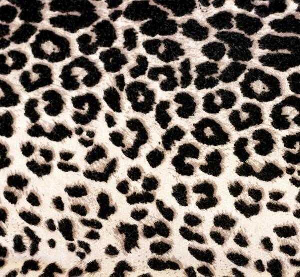 como combinar los leggins de leopardo